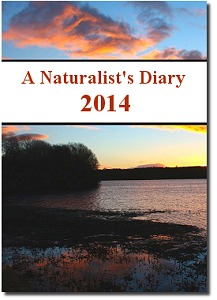 Wildlife-Films Naturalist's Diary of British Wildlife DVD