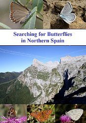A DVD film Searching for Butterflies in Northern Spain